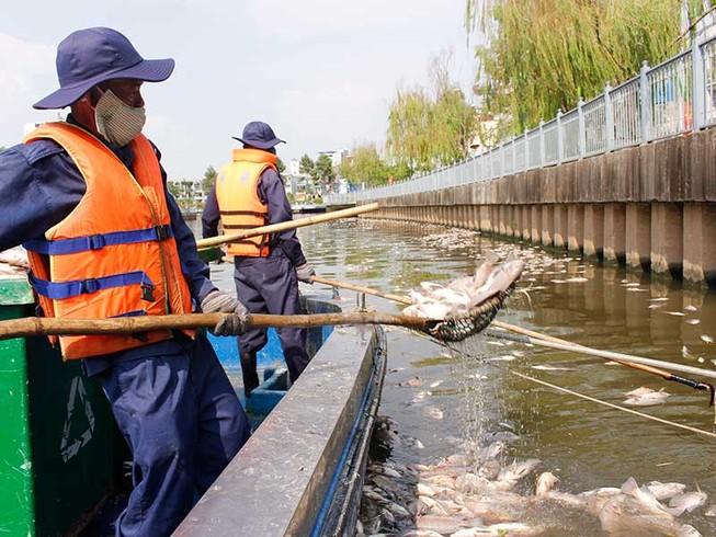 Lắp vòi bơm, máy quạt cho cá trên kênh Nhiêu Lộc