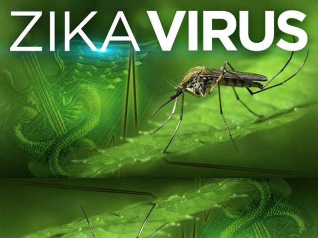 TP.HCM sẽ huy động học sinh chống dịch Zika