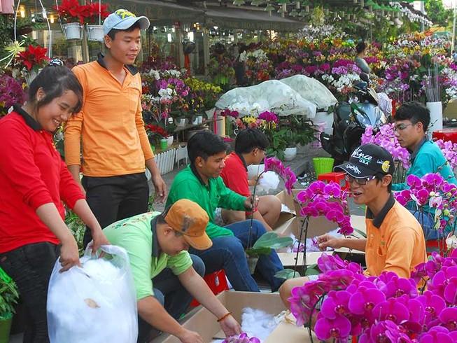 Hoa đẹp, kiểng lạ ba miền hội tụ về Sài Gòn