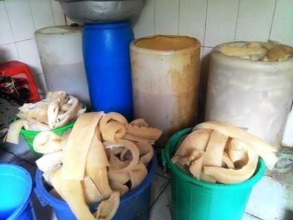 Rùng mình với cảnh bì lợn bẩn ngâm hóa chất ở Sài Gòn