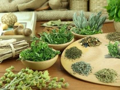 Bạn đã biết uống trà thảo dược đúng cách?