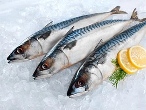Ăn cá có thể chống trầm cảm