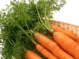 Có thật ăn nhiều cà rốt giúp sáng mắt?