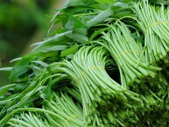 Phát hiện rau muống ngâm hóa chất để tươi xanh