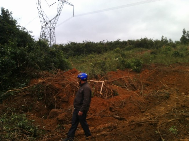 Liều lĩnh trộm diệp thạch sét trong khu vực cấm của đường điện 500kv