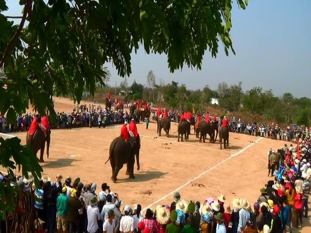 18 chú voi Buôn Đôn thi đá bóng trong lễ hội truyền thống