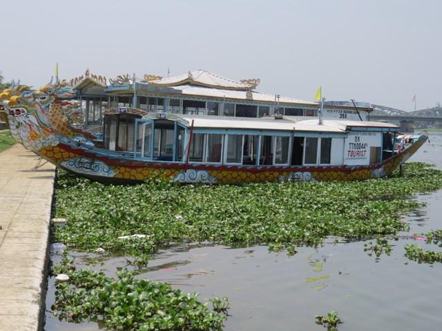 Lục bình 'tấn công' sông Hương