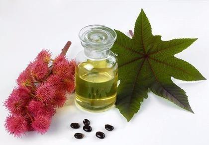 6 lợi ích của dầu thầu dầu đối với sắc đẹp