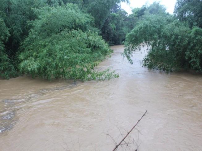 Quảng Ngãi: Xuất hiện lũ trên sông Trà Câu