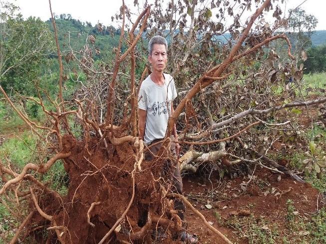 Nổ súng ở Đắk Nông: Tỉnh đã chỉ đạo xử lý nghiêm DN