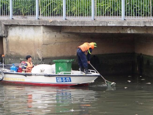 Thời hạn cứu đàn cá ở kênh Nhiêu Lộc - Thị Nghè