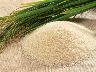 Giá gạo xuất khẩu đang thấp kỷ lục