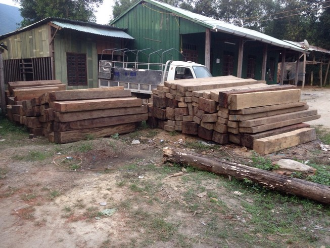 Phát hiện gần 18 m3 gỗ vô chủ được kết bè thả trên sông Vu Gia