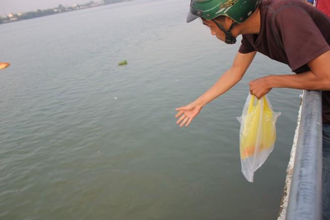 Những kiểu 'phóng sinh' bức tử cá chép