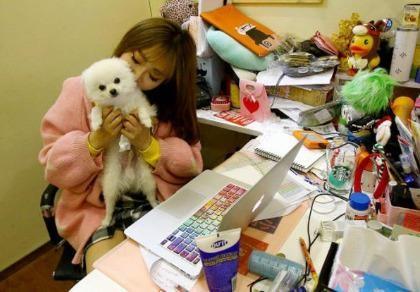 Được phép mang thú cưng đến công sở để... giảm stress