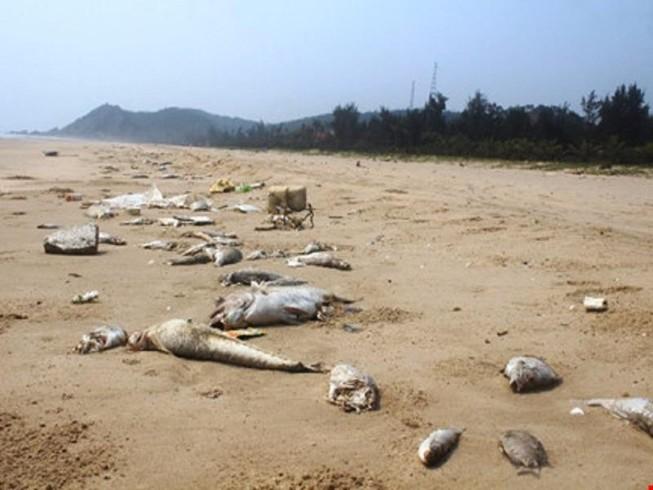 Bộ Công an: Nhiều KCN lợi dụng thủy triều để xả thải