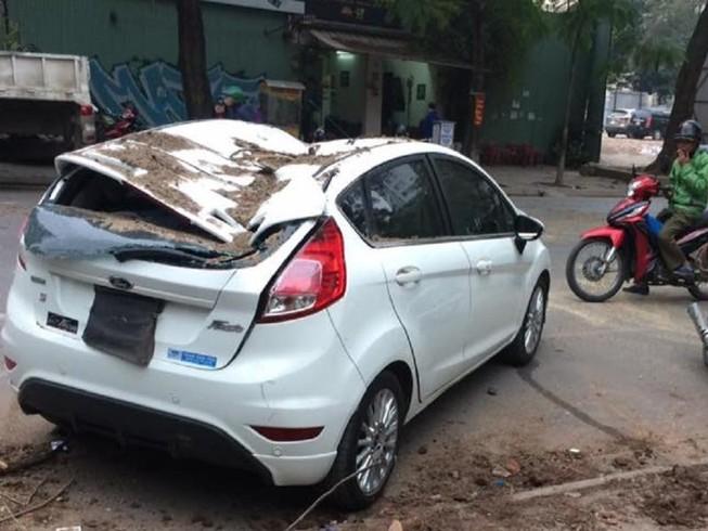 Cây cổ thụ bật gốc, đè bẹp ô tô tại Hà Nội