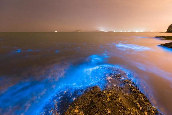 Bờ biển sáng xanh kỳ lạ ở Trung Quốc