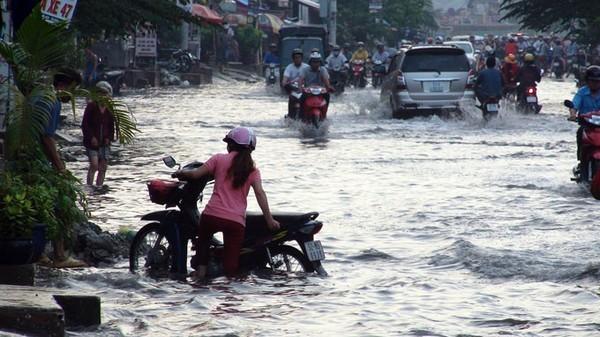 Kinh nghiệm xử lý khi ô tô chạy vào đường ngập nước