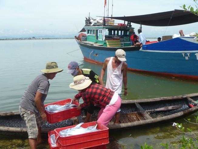 Tuyển chọn 1.300 ngư dân đi Hàn Quốc