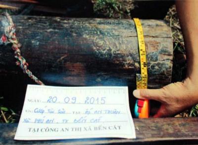 Bốn tên cướp trói cụ ông 90 tuổi để cướp gỗ tủ thờ