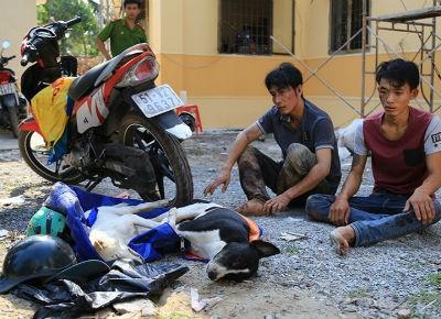 'Cẩu tặc' tấn công cảnh sát bằng ớt bột