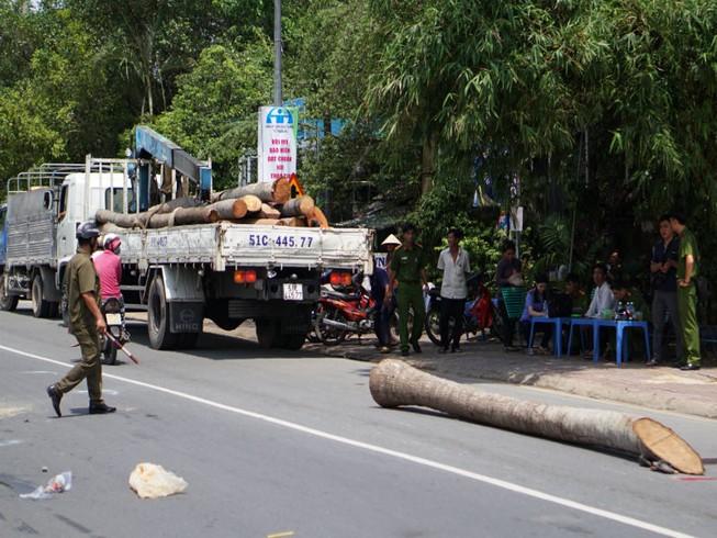Thân cây dừa rơi khỏi cần cẩu đè thiếu niên 15 tuổi