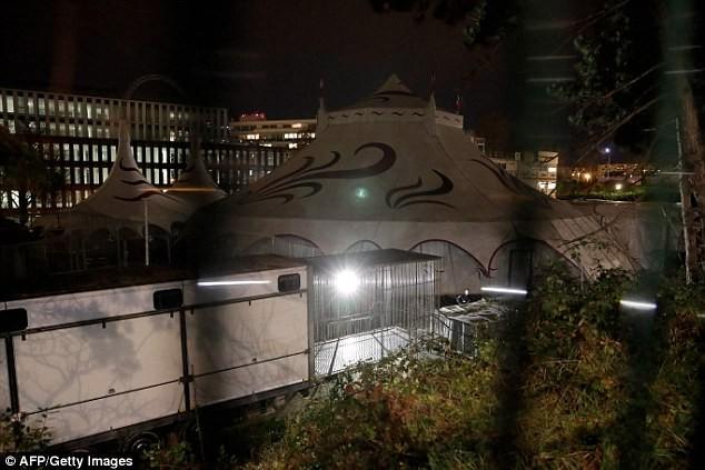 Hổ rạp xiếc xổng chuồng, gây náo loạn nhà ga ở Paris - ảnh 2