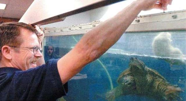 Cho rùa ăn tái cún con trước lớp, thầy giáo đối mặt án tù - ảnh 1