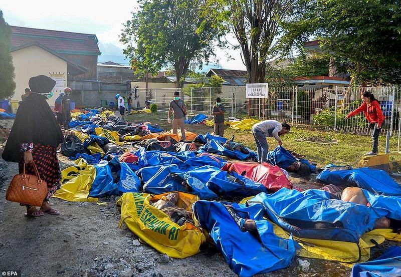 Những hình ảnh rúng động thế giới về thảm họa ở Indonesia   - ảnh 8
