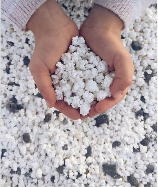 Kỳ lạ bãi biển chứa đầy bỏng ngô - ảnh 1