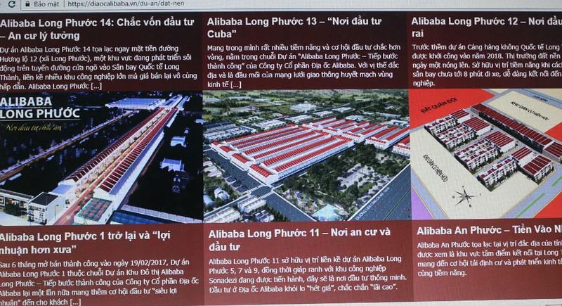 Đồng Nai: Kiểm tra việc bán đất nền của Công ty Địa ốc Alibaba - ảnh 1