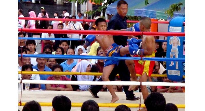 Cần cấm ngay trẻ em thi đấu Kickboxing - ảnh 5