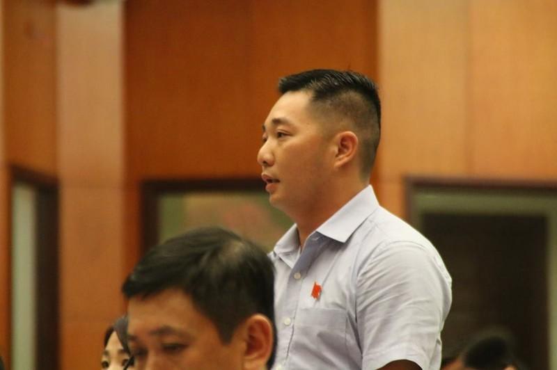 Chủ tịch quận 12 Lê Trương Hải Hiếu trả lời vụ Mầm Xanh - ảnh 1