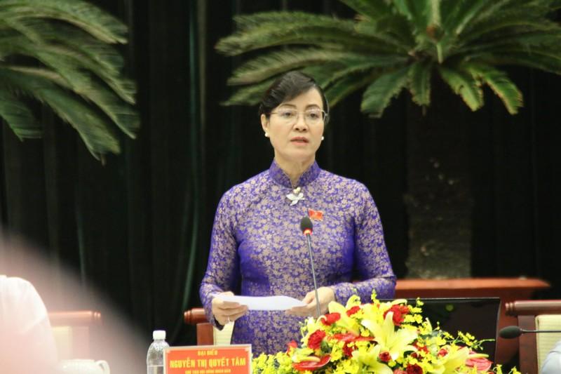 Chủ tịch quận 12 Lê Trương Hải Hiếu trả lời vụ Mầm Xanh - ảnh 2