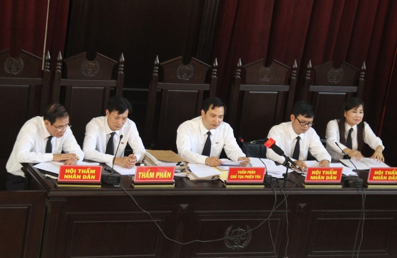 Vụ BS Lương: 'Người đặc biệt' bị tòa từ chối cho nói - ảnh 1