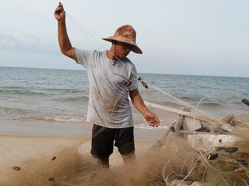 Ngư dân khổ vì cá nóc xuất hiện nhiều bất thường - ảnh 1