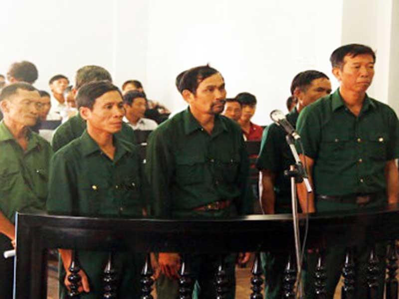 Dọn dẹp rừng, 7 cựu chiến binh bị phạt tù - ảnh 1