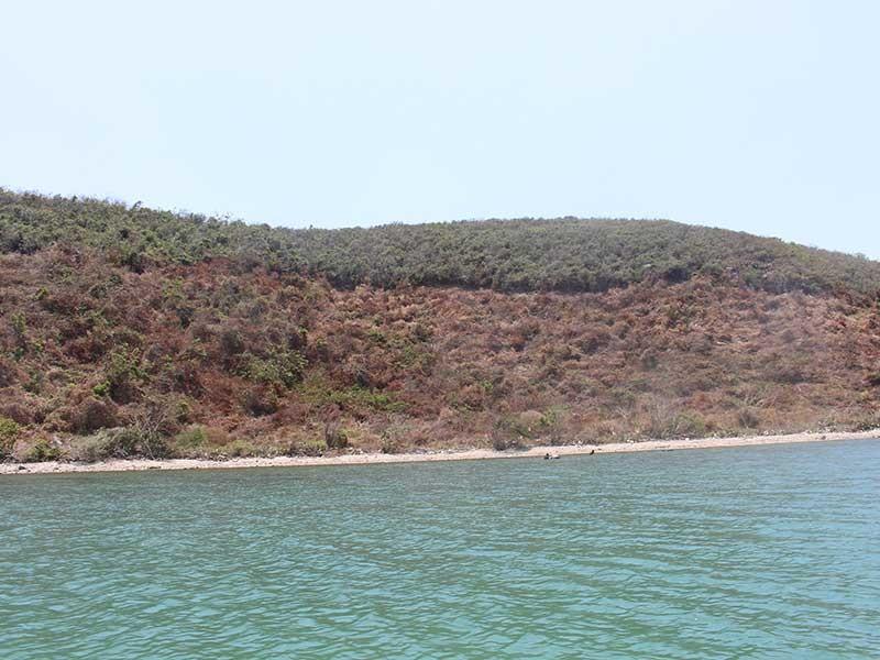 Cử cán bộ 'nằm vùng' ngăn sốt đất Vân Phong - ảnh 1