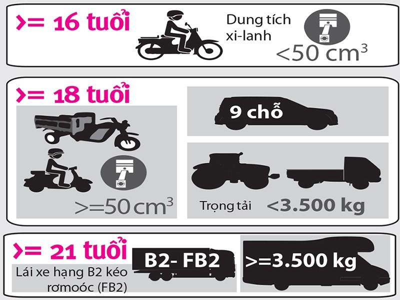 Bao nhiêu tuổi thì được lái xe máy trên 100 phân khối? - ảnh 1