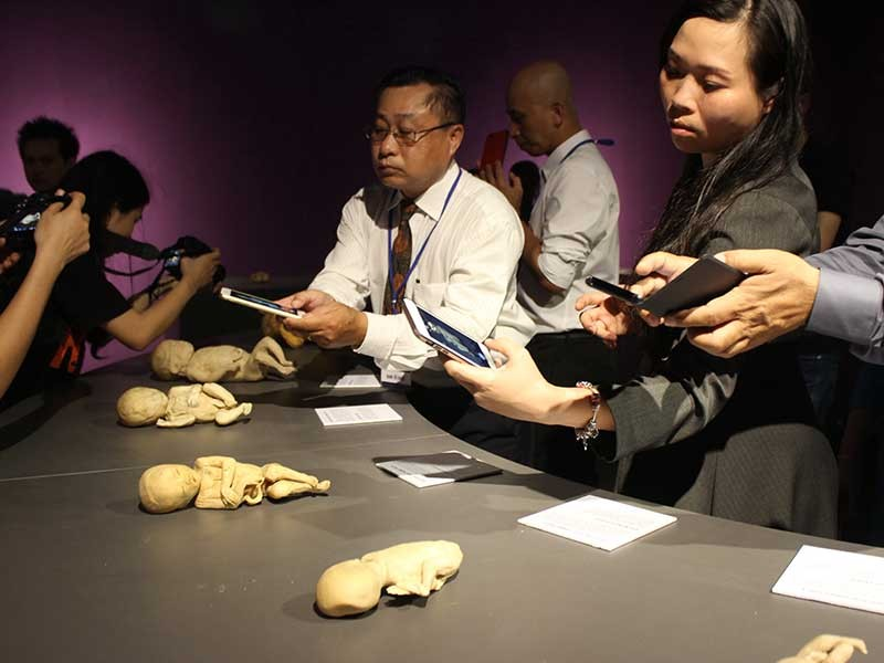Sở Văn hóa-Thể thao TP.HCM nói về triển lãm cơ thể người - ảnh 2