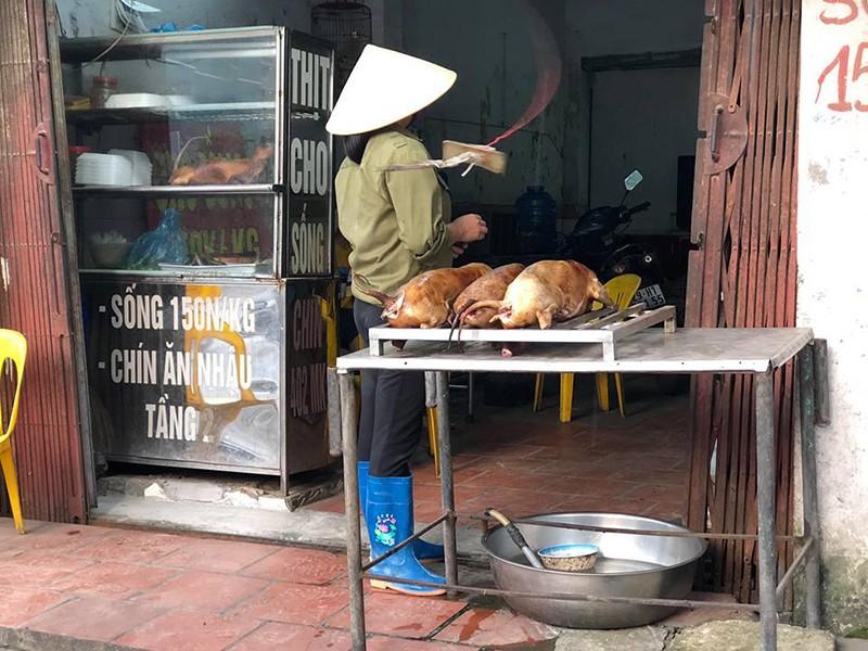 Khuyến khích dân không ăn thịt chó: Văn minh - ảnh 1