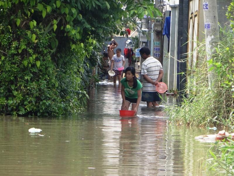 Cảnh ngập ở Sài Gòn chẳng khác chốn thôn quê - ảnh 6