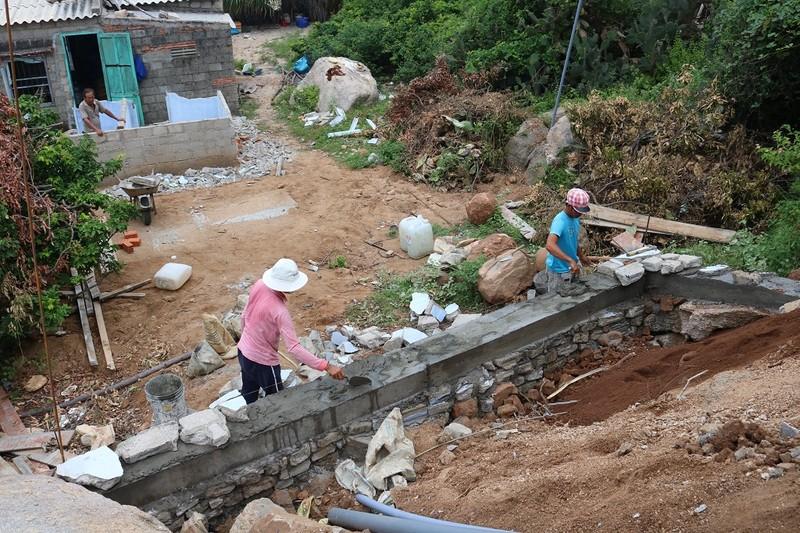 Xuýt xoa trước vẻ đẹp của nhà bảo tồn rùa trên núi Chúa - ảnh 12