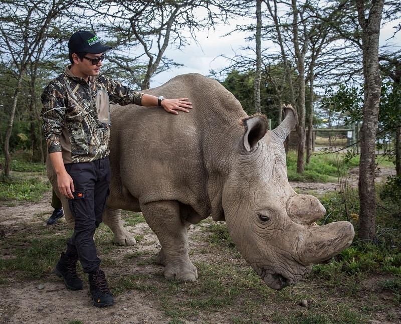 MC Phan Anh đau buồn trước cái chết của tê giác Sudan - ảnh 1