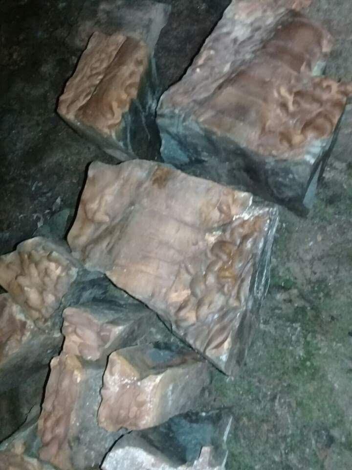 Phát hiện 1 hang động kỳ lạ giữa rừng ở Quảng Ninh - ảnh 3