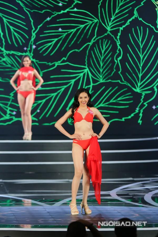 Ngắm nữ sinh viên miền Nam vào chung kết Hoa hậu Việt Nam 2018 - ảnh 8