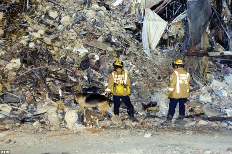 Ảnh Lầu Năm Góc tan hoang sau vụ khủng bố 11-9 - ảnh 7