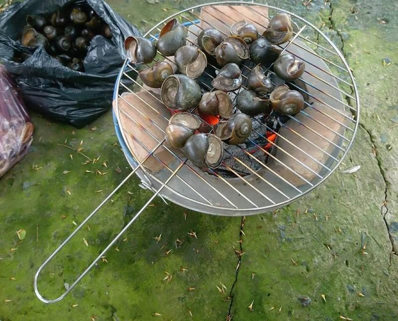 Về An Giang ăn cá linh trên đồng nước nổi - ảnh 8