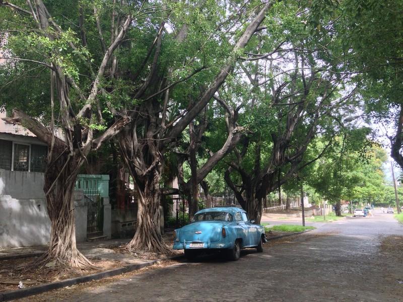 Đừng đến Cuba- bởi đi rồi rất nhớ! - ảnh 7